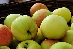Äpfel Hofladen OberGut
