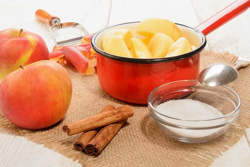 Grießschmarrn mit Apfelkompott