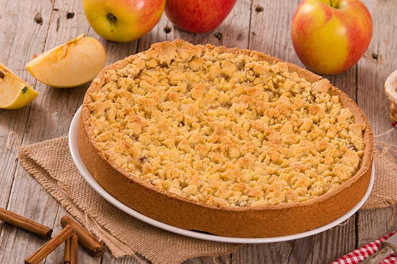 Kürbis-Apfel-Kuchen mit Honig-Zimt-Crumble